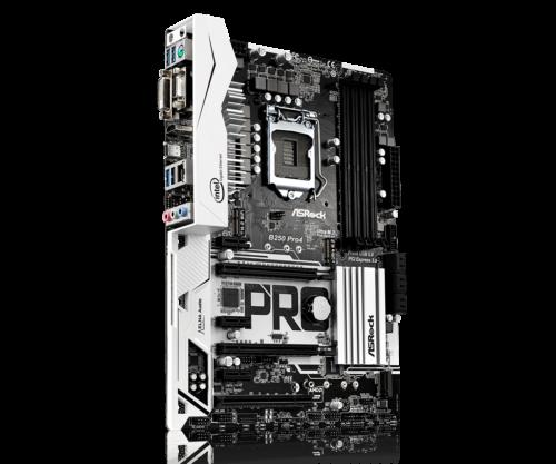 B250-Pro4L4-500x417